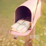 Photo: Pink mail box for mail bag post. Image source: Google Images